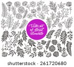 vector floral set. graphic... | Shutterstock .eps vector #261720680