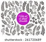 vector floral set. graphic... | Shutterstock .eps vector #261720689