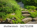 Natural Stone Steps And Path...