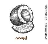 coconut vintage  nut vector | Shutterstock .eps vector #261823238