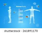 vector illustration of medicine ... | Shutterstock .eps vector #261891170