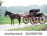 Traditional Horse Carriage ...
