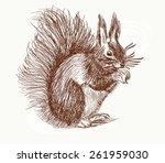 hand drawn squirrel | Shutterstock .eps vector #261959030