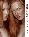 two women. twins girl. redhead. ...   Shutterstock . vector #261963704