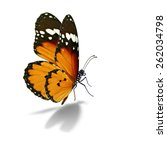 Stock photo beautiful monarch butterfly isolated on white background 262034798