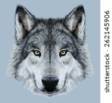 Wolf Animal Face. Scary Grey...