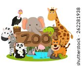 illustrator of zoo animals | Shutterstock .eps vector #262281938