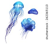blue jellyfish set 4 | Shutterstock .eps vector #262365113