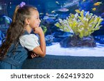 Little Girl Looking At Fish...