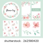 vector of flowers and leaves... | Shutterstock .eps vector #262580420