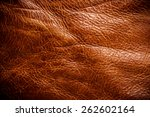 Постер, плакат: Tan Brown Leather for