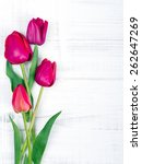 Pink Tulips On White Wooden...