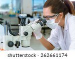 scientist checking with... | Shutterstock . vector #262661174