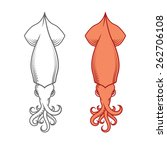 squid  calamary. decorative... | Shutterstock .eps vector #262706108