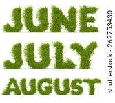 3d decorative nature summer... | Shutterstock . vector #262753430