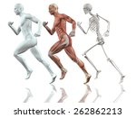 3d male figure running with... | Shutterstock . vector #262862213