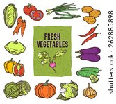 vegetable sketch icons set with ...   Shutterstock .eps vector #262885898