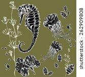 sea collection. original vector ... | Shutterstock .eps vector #262909808