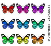 collection set of beautiful... | Shutterstock . vector #262920158