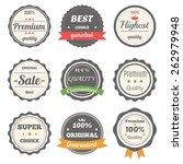 vector set of retro labels.... | Shutterstock .eps vector #262979948
