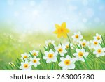 Vector Spring Nature Backgroun...