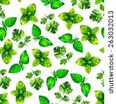 watercolor illustration herbs...   Shutterstock . vector #263032013