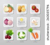 infographic food vegetables... | Shutterstock .eps vector #263035796