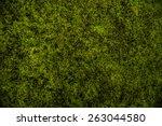 Green Moss Background Texture...