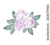 branch of roses on white | Shutterstock .eps vector #263075960