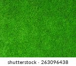 green texture grass background | Shutterstock . vector #263096438