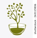 olive oil design over white... | Shutterstock .eps vector #263115836