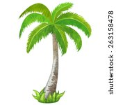 watercolor green coconut palm... | Shutterstock .eps vector #263158478