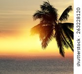 coconut palm tree silhouette... | Shutterstock . vector #263228120