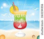 summer holidays vector... | Shutterstock .eps vector #263234336