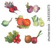 watercolor vegetable mix on... | Shutterstock . vector #263353073