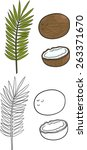 sliced coconut and palm leaves. ... | Shutterstock .eps vector #263371670