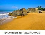 ocean coast of sri lanka in the ... | Shutterstock . vector #263409938