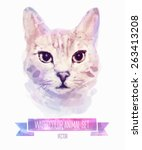 vector set of animals. kitten... | Shutterstock .eps vector #263413208