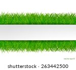 fresh green grass with white... | Shutterstock .eps vector #263442500