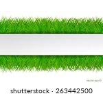 fresh green grass with white... | Shutterstock .eps vector #263442500