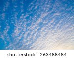 cloud of blue sky | Shutterstock . vector #263488484