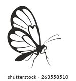 butterfly   Shutterstock .eps vector #263558510