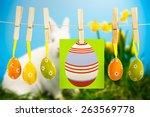 Easter Eggs Against White...
