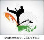 warrior. karate illustration.... | Shutterstock .eps vector #263715413