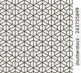 vector seamless pattern. modern ... | Shutterstock .eps vector #263735849