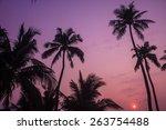 beautiful sunrise on beach and... | Shutterstock . vector #263754488