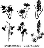 plants collection | Shutterstock .eps vector #263763329