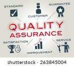 quality assurance  infographic... | Shutterstock . vector #263845004