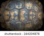 Pattern Of Turtle Shell.