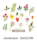 floral set with watercolor... | Shutterstock .eps vector #264221780